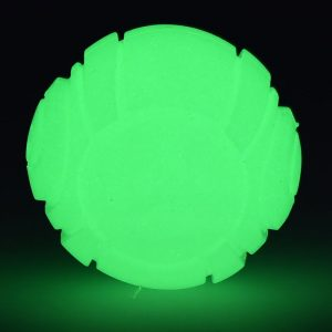 Glow in the dark hondenbal